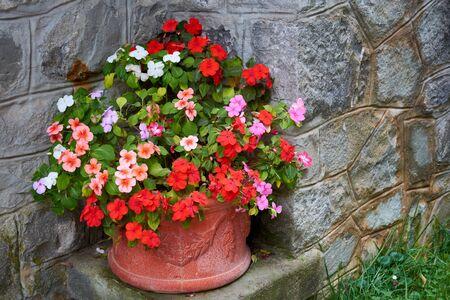 Decorative floral arrangement of flowers in autumn garden, autumn bouquet. Decorative composition of multicolored flowers in vase. Stok Fotoğraf