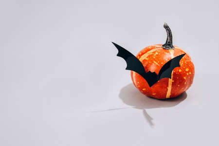 Minimal Halloween scary concept - decorative orange pumpkin with bat shape mustache on light gray background with copy space. Halloween decorations or party invitation concept. Selective focus