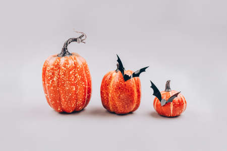 Minimal Halloween scary and concept. Decorative orange pumpkins with bats on light gray background with copy space. Halloween decorations or party invitation. Selective focus