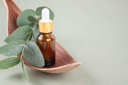 Amber glass dropper bottle with eucalyptus oil. Modern organic cosmetics concept, facial skincare. Trendy still life composition with eucalyptus leaves on green background with copy space, mockup