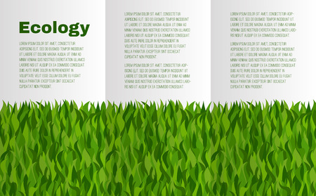 a place for the text: Booklet layout with green grass on the theme of ecology. There is a place for text.
