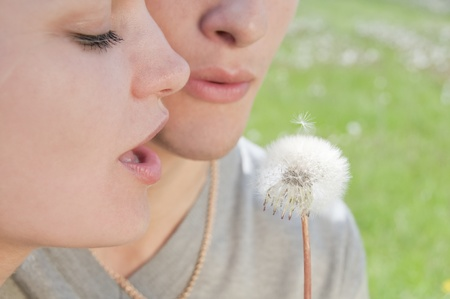 Girl and man are blowing on white dandelion in a green field photo