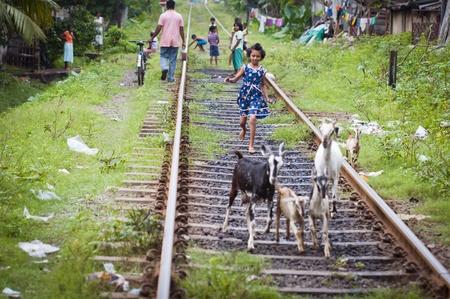 optimismo: Bendota, Sri Lanka - 16 de diciembre de 2011: Sri sonriente ni�a Lankian despreocupado en el vestir se est� ejecutando en las l�neas de ferrocarril con las cabras en la parte delantera y ni�os jugando en el fondo. Selectivo se centran en la ni�a.