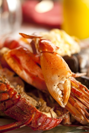 Dish with cooked crabs and lobsters Stock Photo