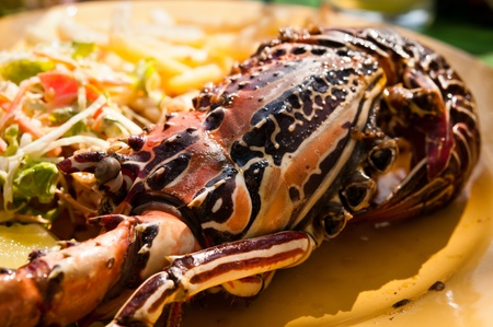 Grilled lobster photo