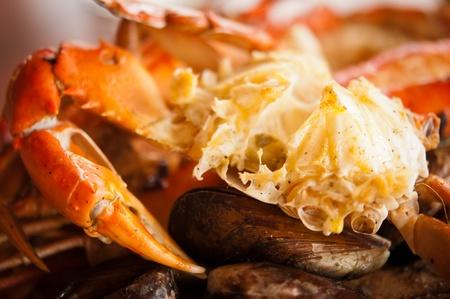 Dish mit Krabben und Muscheln Standard-Bild