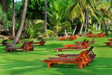 Beach beds between tropical trees on green grass photo