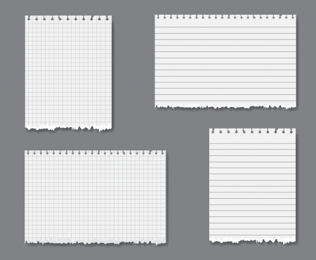 Vector set with sheets of loose lined and graph leaf paper with torn lower edge