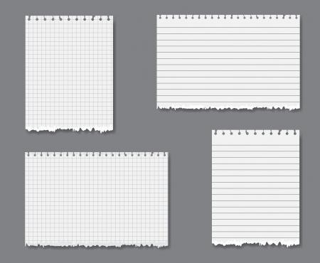 foglio a righe: Vector set con fogli di carta sciolti foglia foderato e grafico con strappato bordo inferiore