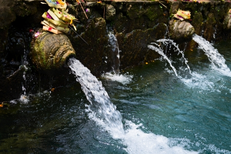 Holy sacred spring water in Puru Tirtha Empul Temple, Bali, Indonesia with purifying pools Stock Photo - 17806401