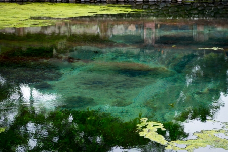 welling: Water welling up from the earth in holy spring in Tirta Empul temple, Bali, Indonesia