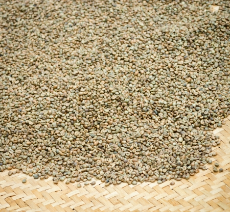 unroasted: Green unroasted coffee beans on mat with shallow depth of field
