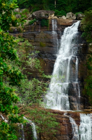 Large waterfalls in green tropical forest at Nuwara Eliya, Sri Lanka   photo