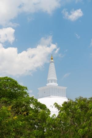 anuradhapura: White sacred stupa Ruwanmalisaya above green trees, Anuradhapura, Sri Lanka