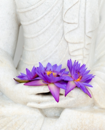 Fresh flue star water lily or star lotus flowers in Buddha image hands photo