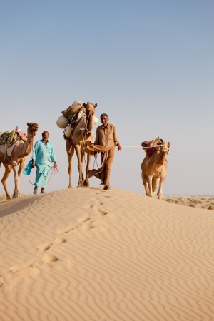 Caravan with bedouins and camels on gold dunes in desert at sunset under clean sky