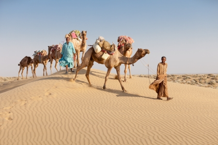 Caravan with bedouins and camels on sand dunes in desert at sunset. Thar desert or Great Indian desert. photo