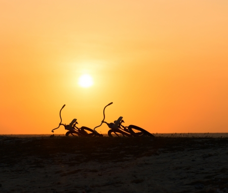 Two lying bikes silhouettes at the tropical sunset on a beach with bird in clear sky photo
