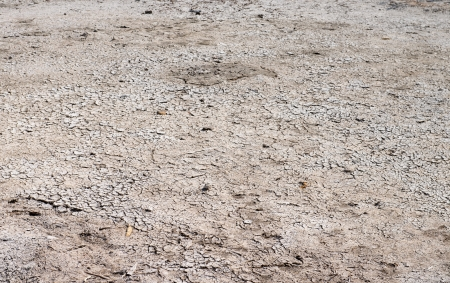 draining: Dry cracked ground after a lake draining
