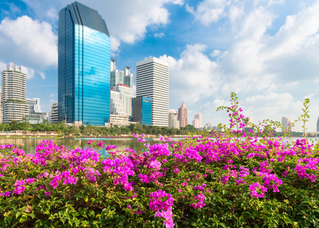 Modern city skyline of business district downtown with pink flowers in front in day under blue sky photo