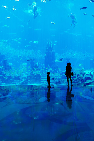 어머니와 아이들과 가족은 큰 수족관에서 물고기를 관찰