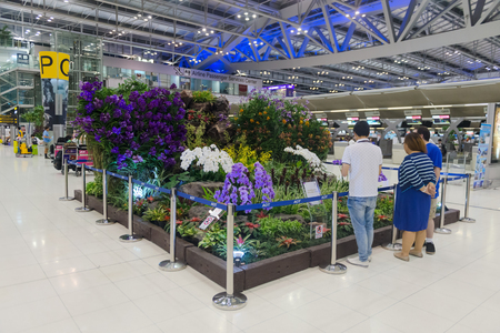 concourse: BANGKOK, THAILAND - 15 JULY 2014: Beautiful, indoor garden display in the main concourse of Suvarnabhumi Airports passenger terminal.