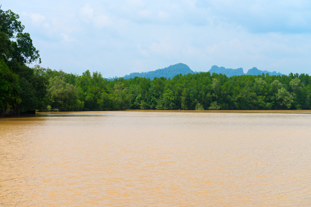 forested: Muddy river water flows past densely forested banks on a cloudy afternoon in this wilderness area of Krabi province in Thailand.