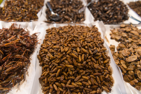 culinary tourism: Wide assortment of edible, fried insects and grubs being sold at a public market in Southeast Asia, for human consumption.