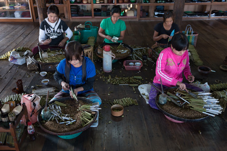off cuts: INLE, MYANMAR - 01 JAN 2014:  Women in work place rolling traditional hand made Burmese cigars