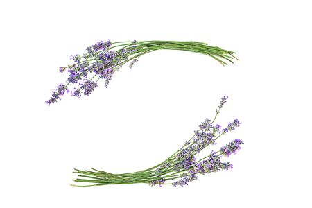 Lavender flowers isolated on white background. Flat lay, top view, copy space.