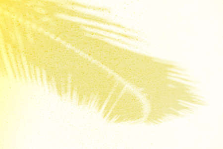 Palm leaf shadows on a white sand on tropical beach. Trendy holiday concept. Selective focus. Yellow toned. 免版税图像