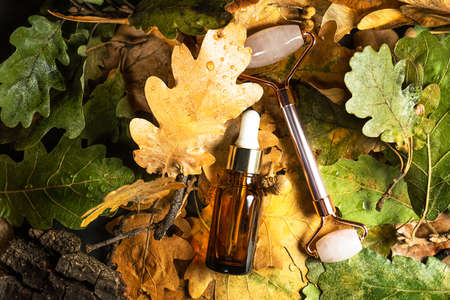 Autumn Beauty product creative composition. Beautiful autumn leaves and Rose quartz facial Jade roller with serum. Massaging tool for beautuful face and body. Flat lay, top view, copy space.