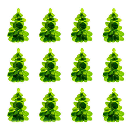 Holiday pattern made of fresh green mint leaves as Christmas tree on white background, isolated. Christmas, New Year winter creative concept. Close up, flat lay, top view. 版權商用圖片