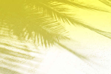 Palm leaf shadows on a white sand on tropical beach. Trendy holiday concept. Selective focus. Yellow toned. 版權商用圖片