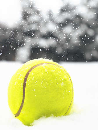 Tennis Christmas ball on the snow on Christmas trees background, and falling snowflakes. Concept of Color of the Year 2021 with bright illuminating yellow and gray colours, front view, selective focus. 版權商用圖片