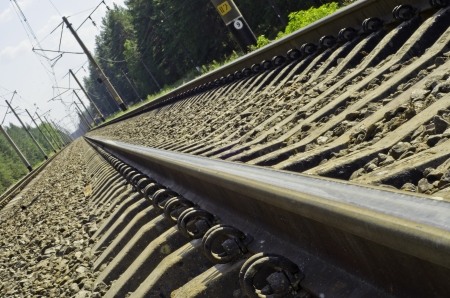 Railway, passing through a pine-wood and get-away over-the-horizon Stock Photo - 15707743