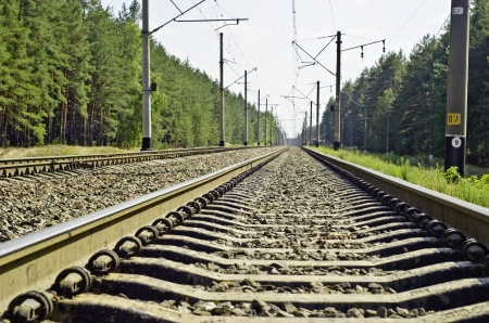 Railway, passing through a pine-wood and get-away over-the-horizon