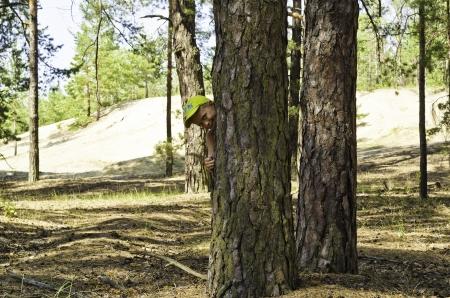 Un ni�o se asoma por un pino en un bosque de pinos sobre un fondo de arena de la zona del bosque joven. Foto de archivo - 15707895
