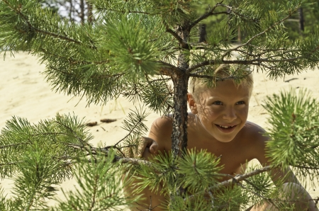 excitation: A child is hidden under a pine-tree on a background yellow sand