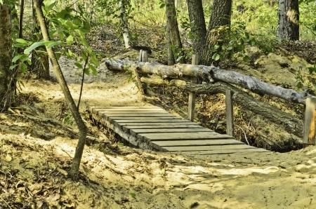sandy soil: Ponte di legno attraverso un ruscello tranquillo in campo con terreno sabbioso