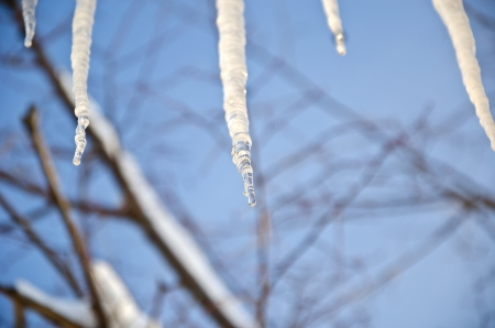 frost bound: Large and thick icicles above a window