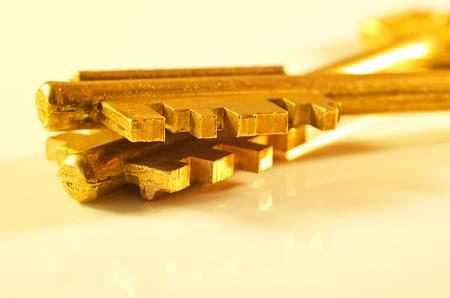 Macro golden key on a light background