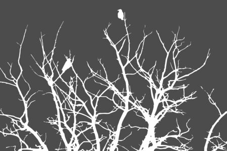 white silhouette for halloween on gray background, crows sitting on a tree in winter or autumn forest, dry trees, doodle style, vector illustration