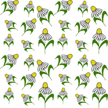 doodle flower pattern, kids hand drawing line art camomile, vector illustration