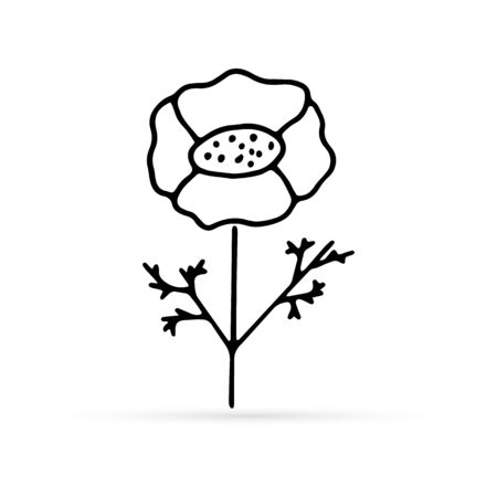 doodle poppy with leaf, flower icon, kids hand drawing lne art, vector illustration