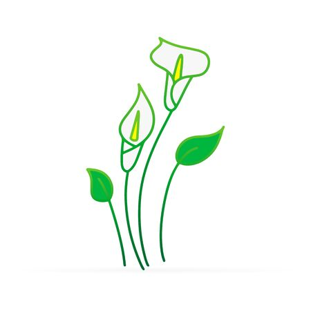 Doodle calla lilies icon isolated on white. Sketch flower. Hand drawing line art.