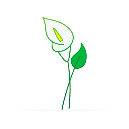 Doodle calla lilies icon isolated on white. Sketch flower. Hand drawing line art. Outline vector stock illustration. EPS 10