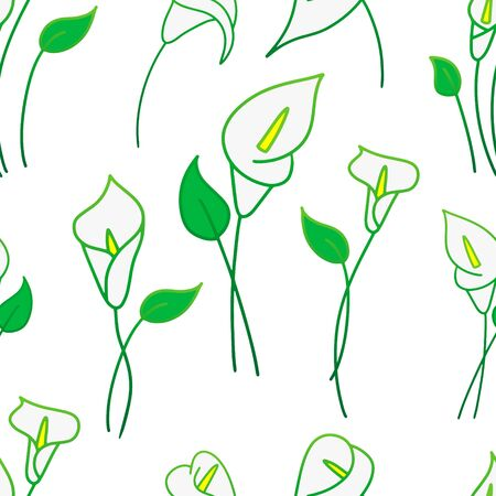 Doodle calla lilies seamless pattern isolated on white. Sketch flower. Hand drawing line art.