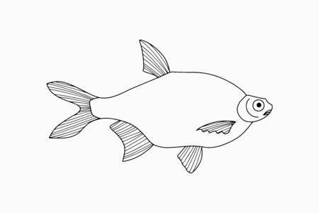 Outline underwater animal isolated on white. Sketch hand drawing art line. Fish for coloring page book. Outline sea life. Vector stock illustration. EPS 10