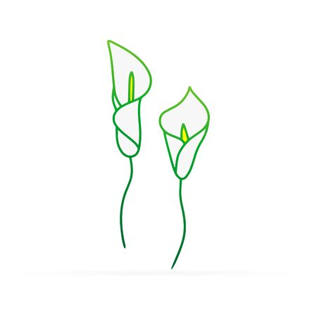 Doodle calla lilies icon isolated on white. Sketch flower. Hand drawing line art. Outline vector stock illustration Ilustrace